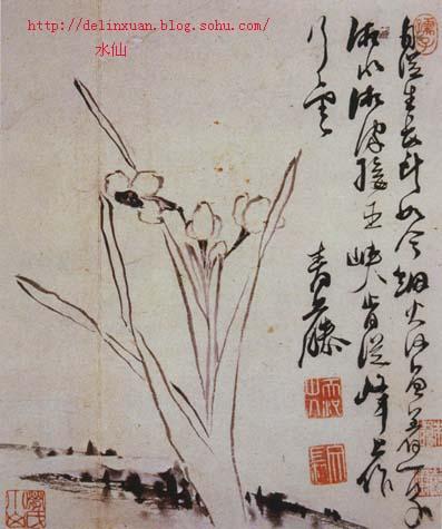明代大画家徐渭国画泼墨写意画作品欣赏(下)