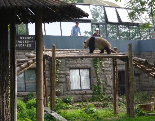 参观北京动物园和海洋馆