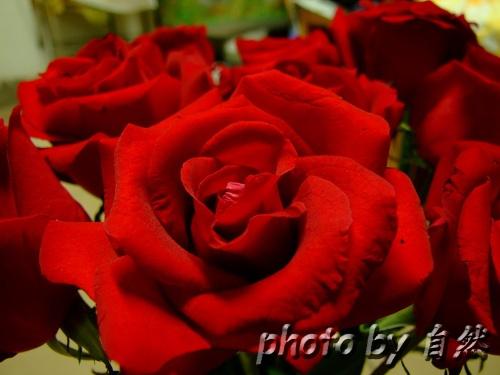 珠子玫瑰的编法图解