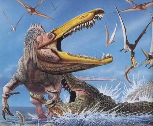 赛罗恐龙动物动画片