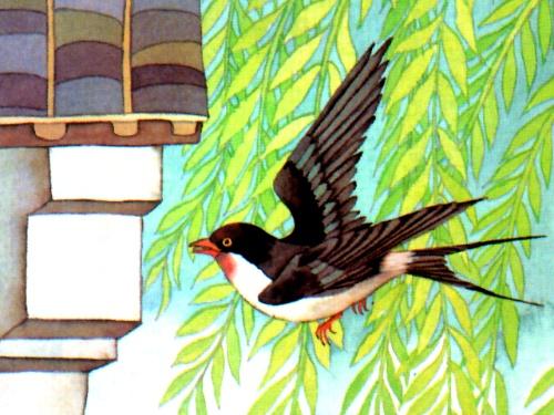 飞翔鹦鹉绘画步骤