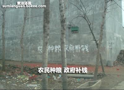 """动物园标语:""""保护野生动物就是保护"""